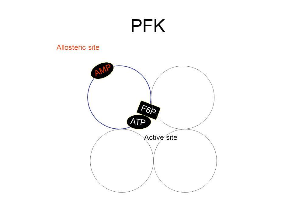 AMP ATP F6P Active site Allosteric site PFK