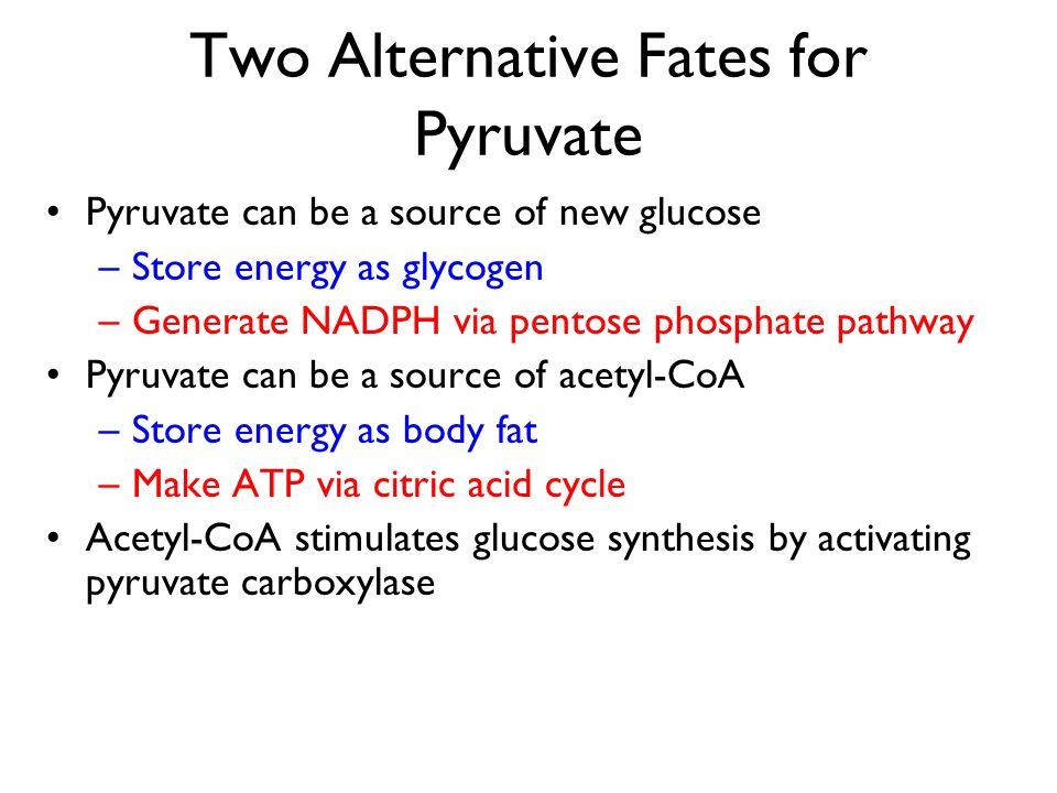Two Alternative Fates for Pyruvate Pyruvate can be a source of new glucose –Store energy as glycogen –Generate NADPH via pentose phosphate pathway Pyr