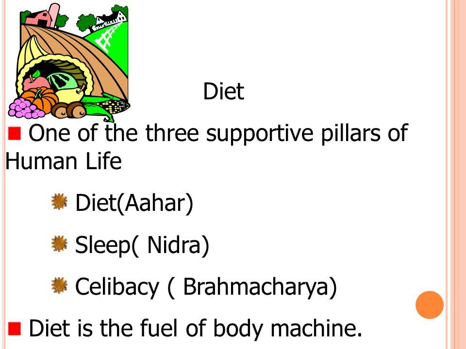 Diet One of the three supportive pillars of Human Life Diet(Aahar) Sleep( Nidra) Celibacy ( Brahmacharya) Diet is the fuel of body machine.