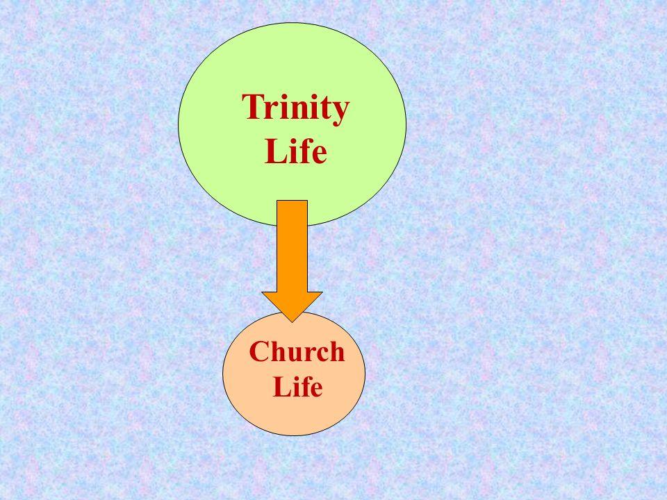 Oneness Trinity Life Church Life