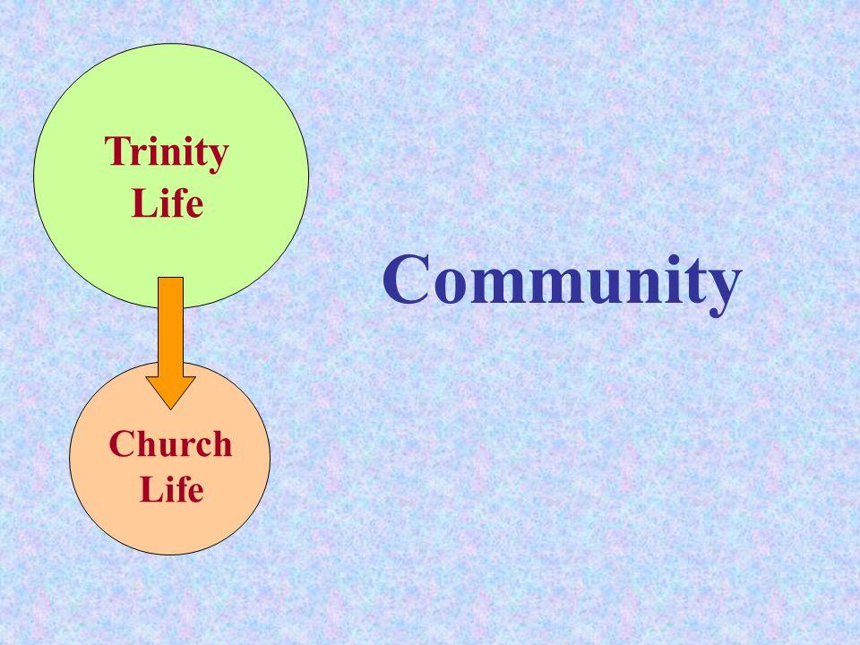 Community Trinity Life Church Life