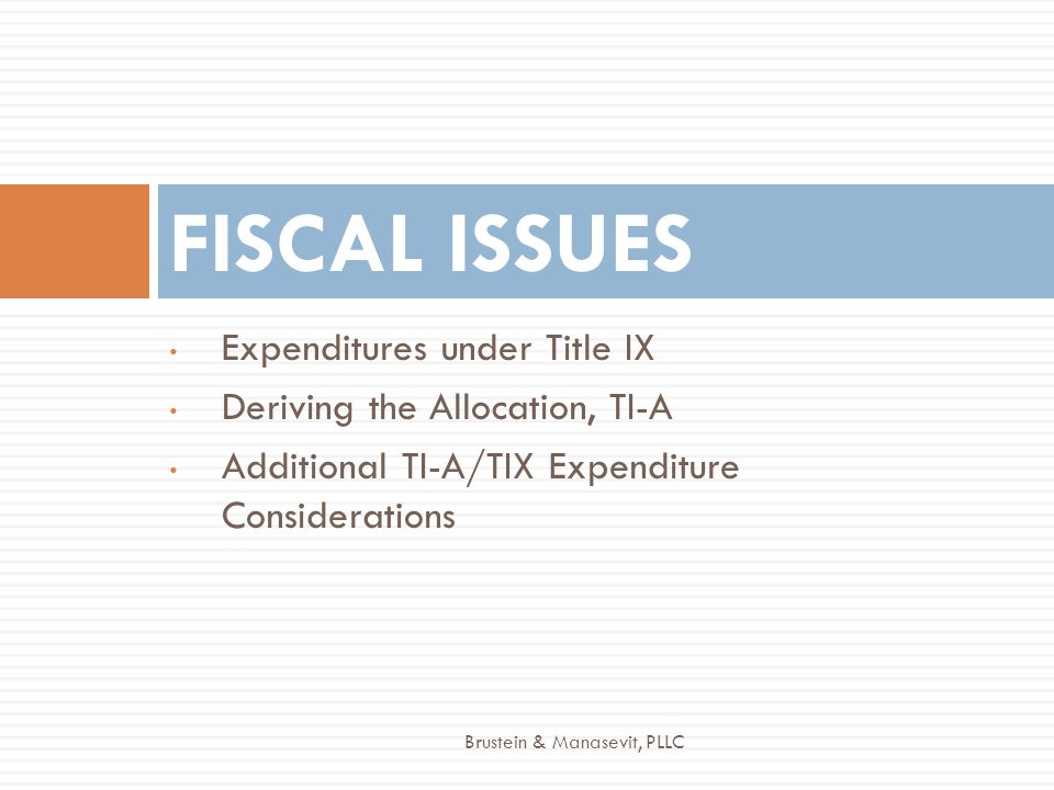 Expenditures under Title IX Deriving the Allocation, TI-A Additional TI-A/TIX Expenditure Considerations FISCAL ISSUES Brustein & Manasevit, PLLC