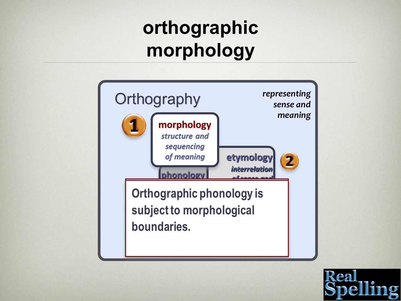 Orthography representing sense and meaning phonology units of speech that construct meaning phonology units of speech that construct meaning etymology