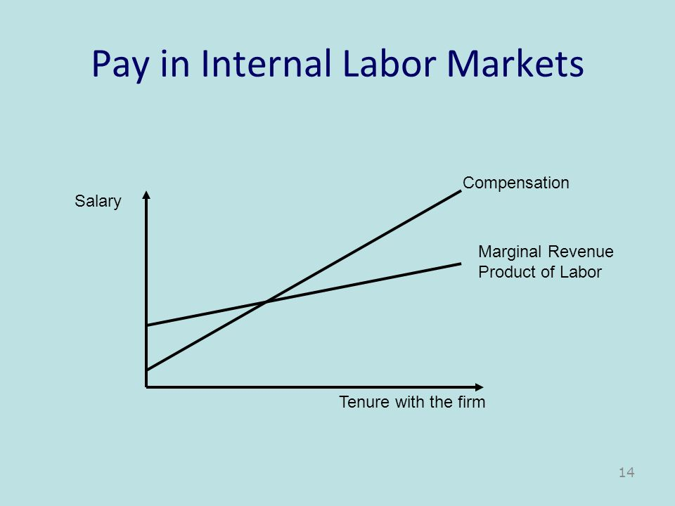 Pay in Internal Labor Markets Tenure with the firm Salary Compensation Marginal Revenue Product of Labor 14