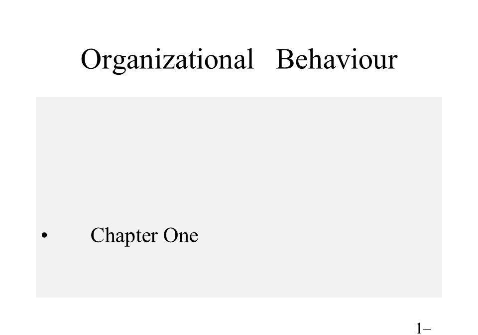 Organizational Behaviour Chapter One 1– 1