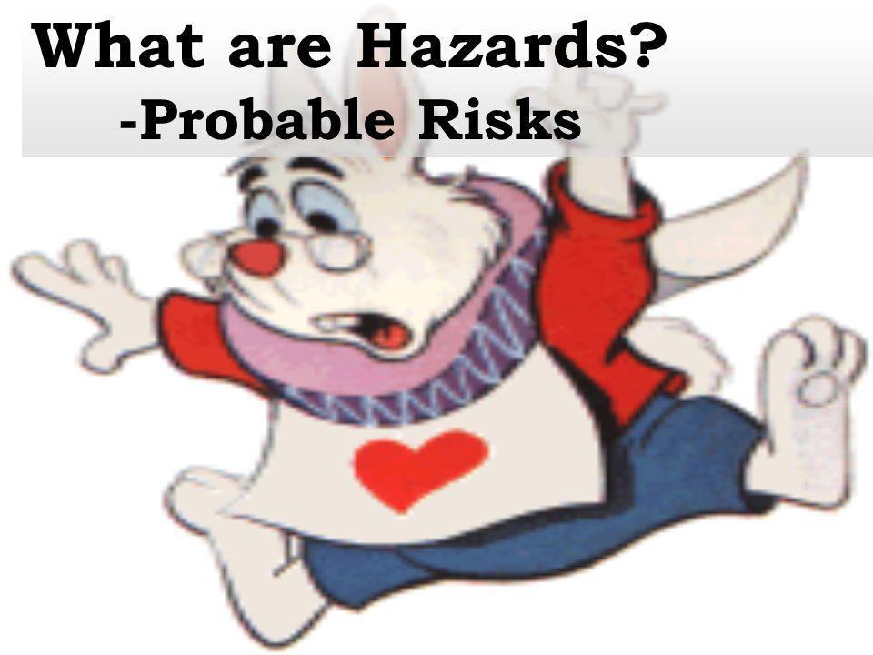 -Probable Risks