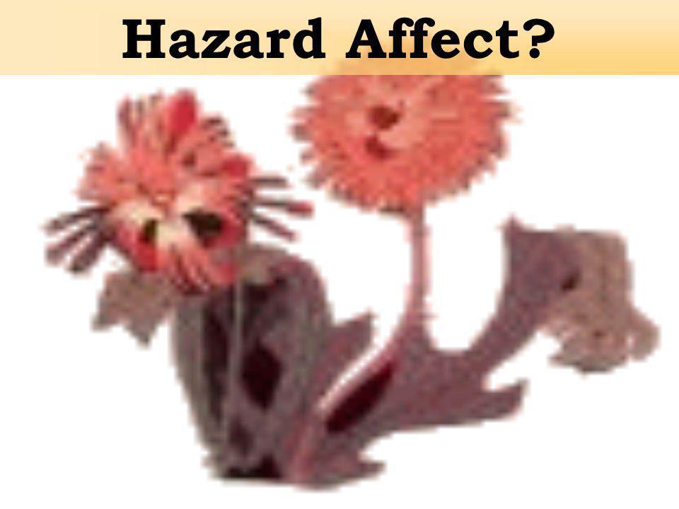 Hazard Affect?