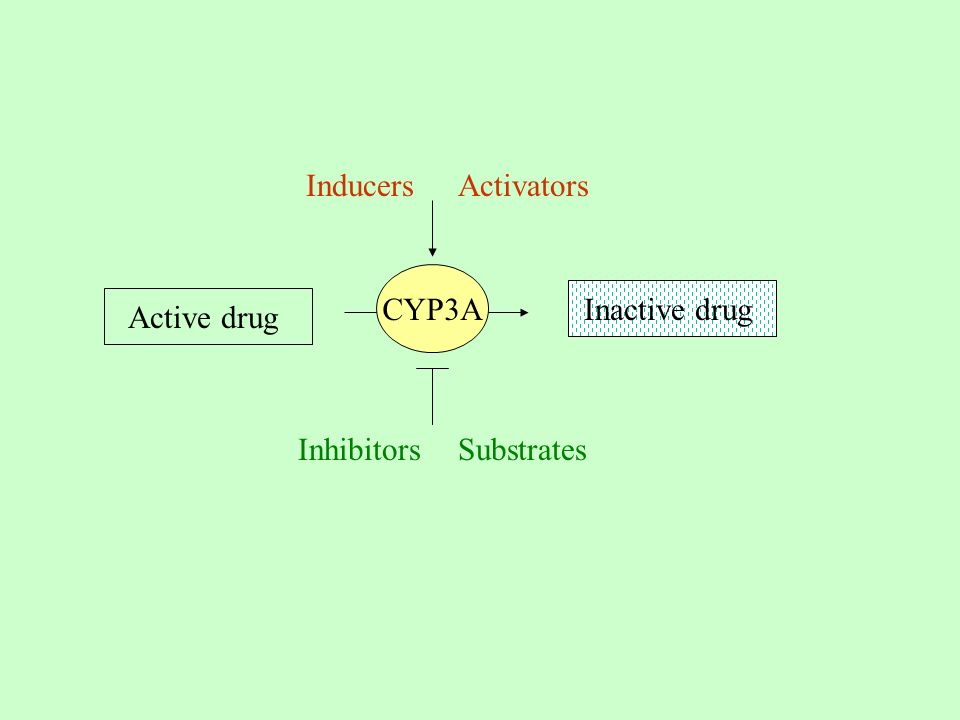 Active drug Inactive drug CYP3A Inhibitors Activators Substrates Inducers