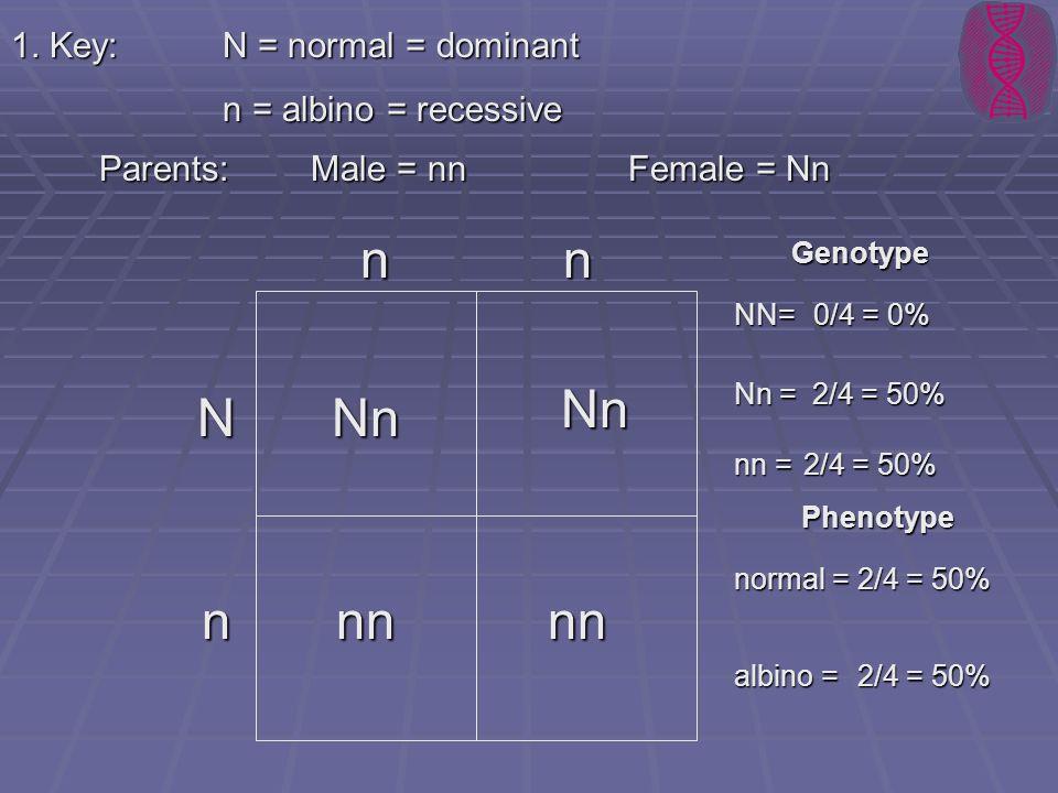 1. Key:N = normal = dominant n = albino = recessive Parents: Male = nnFemale = Nn n n N Nn Nn nnnn n Genotype Phenotype normal = albino = 2/4 = 50% NN