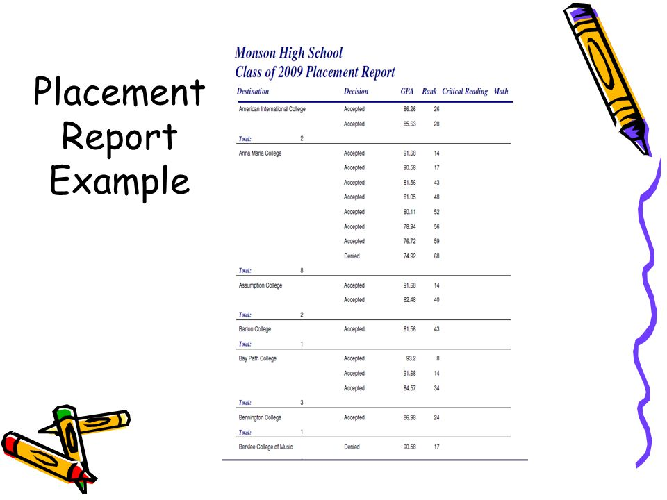 Placement Report Example