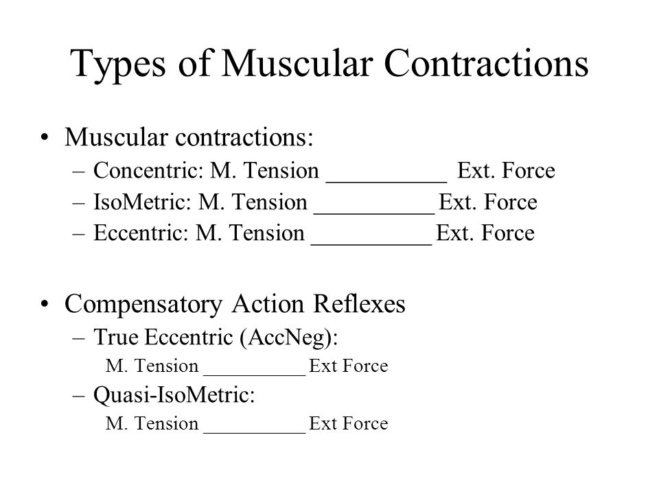 Types of Muscular Contractions Muscular contractions: –Concentric: M. Tension __________ Ext. Force –IsoMetric: M. Tension __________ Ext. Force –Ecce