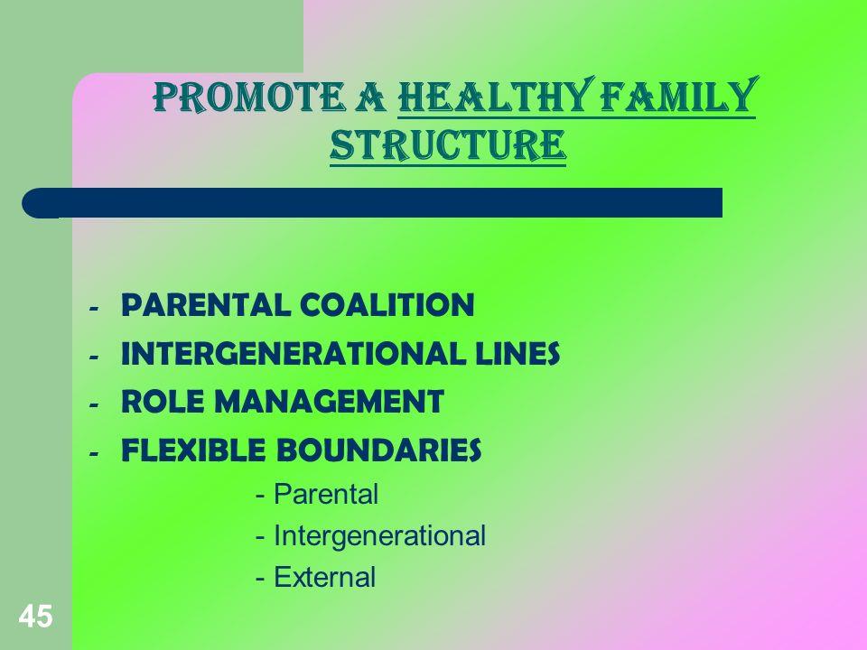 45 PROMOTE A HEALTHY FAMILY STRUCTURE - PARENTAL COALITION - INTERGENERATIONAL LINES - ROLE MANAGEMENT - FLEXIBLE BOUNDARIES - Parental - Intergenerat