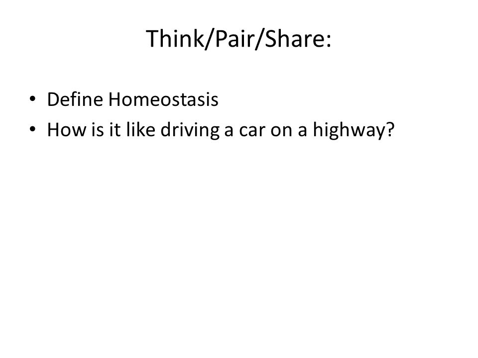 Think/Pair/Share: Define Homeostasis How is it like driving a car on a highway?