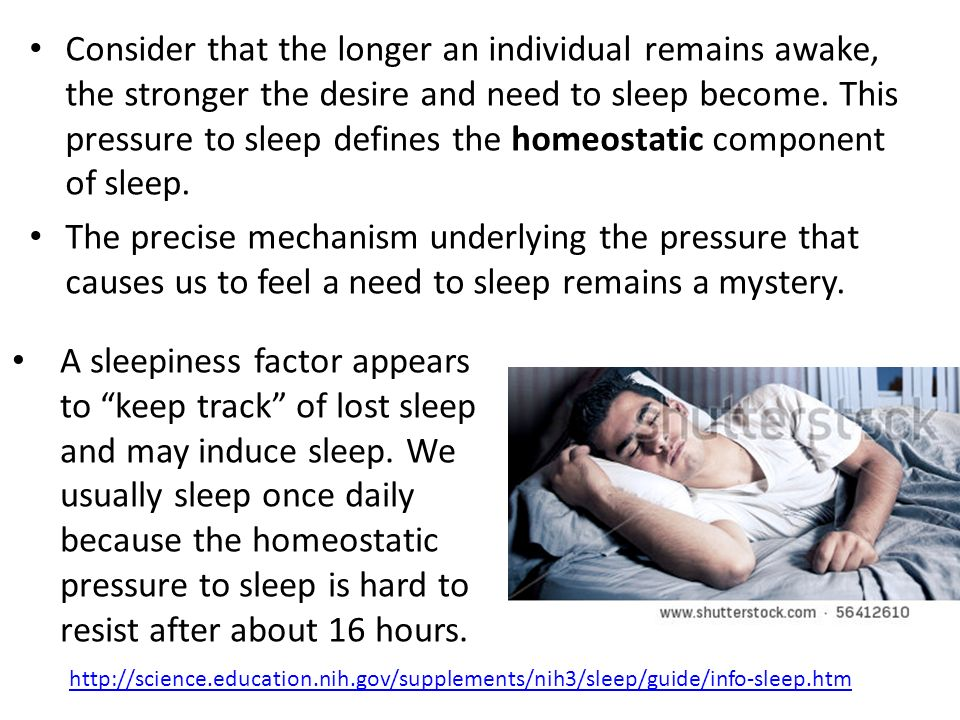 Consider that the longer an individual remains awake, the stronger the desire and need to sleep become. This pressure to sleep defines the homeostatic