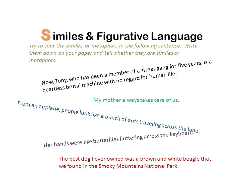 S imiles & Figurative Language Try to spot the similes or metaphors in the following sentence.