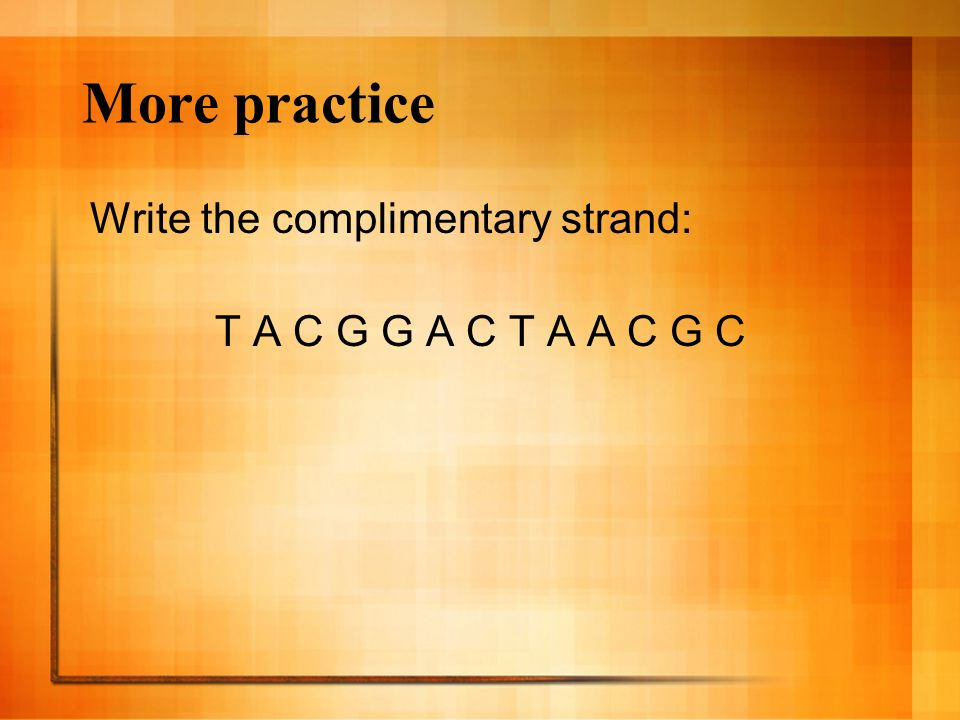 More practice Write the complimentary strand: T A C G G A C T A A C G C
