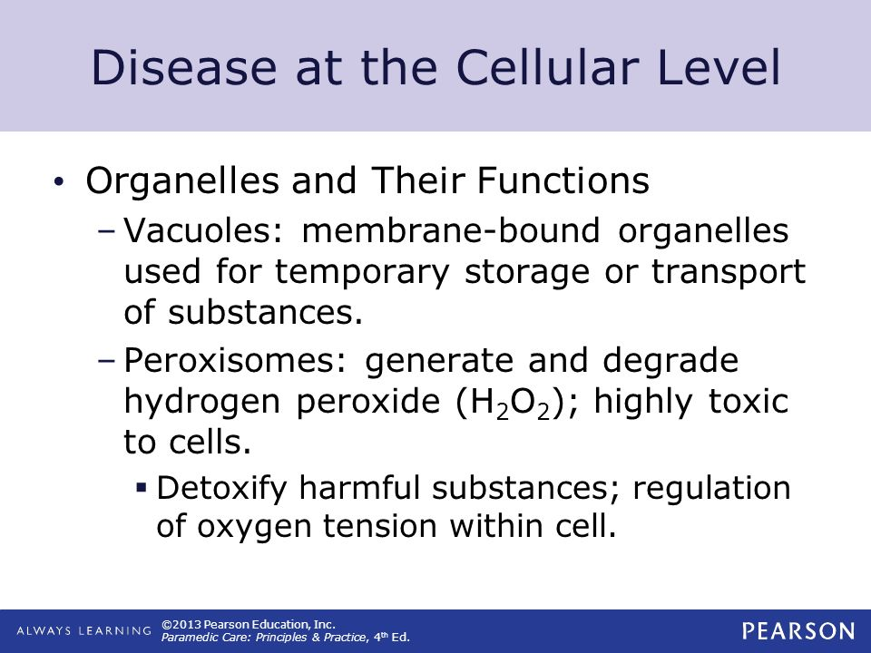©2013 Pearson Education, Inc. Paramedic Care: Principles & Practice, 4 th Ed. Disease at the Cellular Level Organelles and Their Functions –Vacuoles: