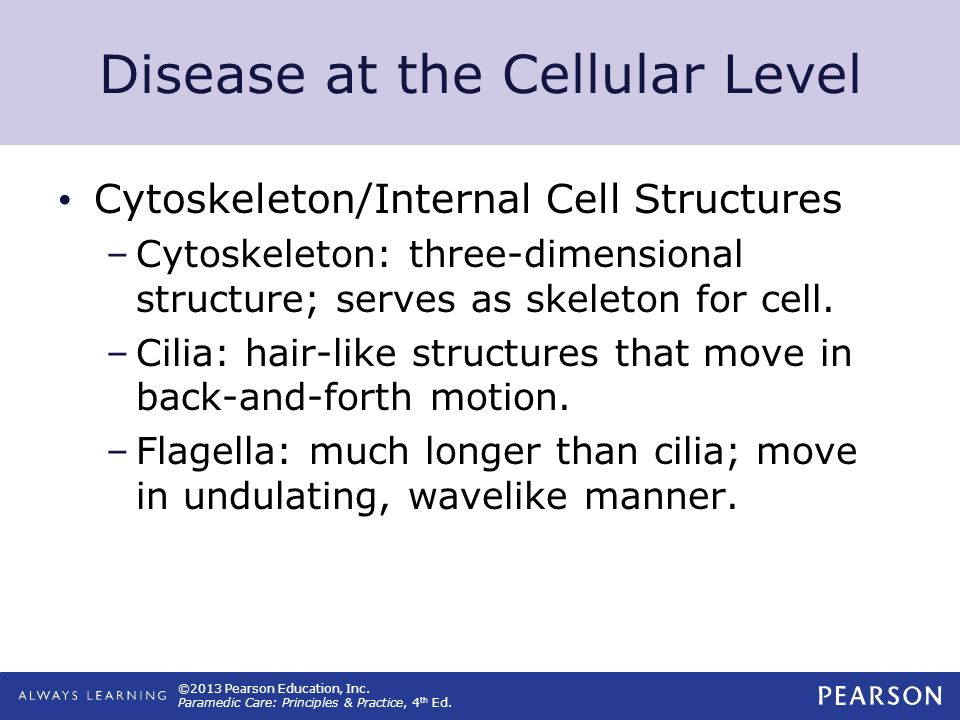 ©2013 Pearson Education, Inc. Paramedic Care: Principles & Practice, 4 th Ed. Disease at the Cellular Level Cytoskeleton/Internal Cell Structures –Cyt