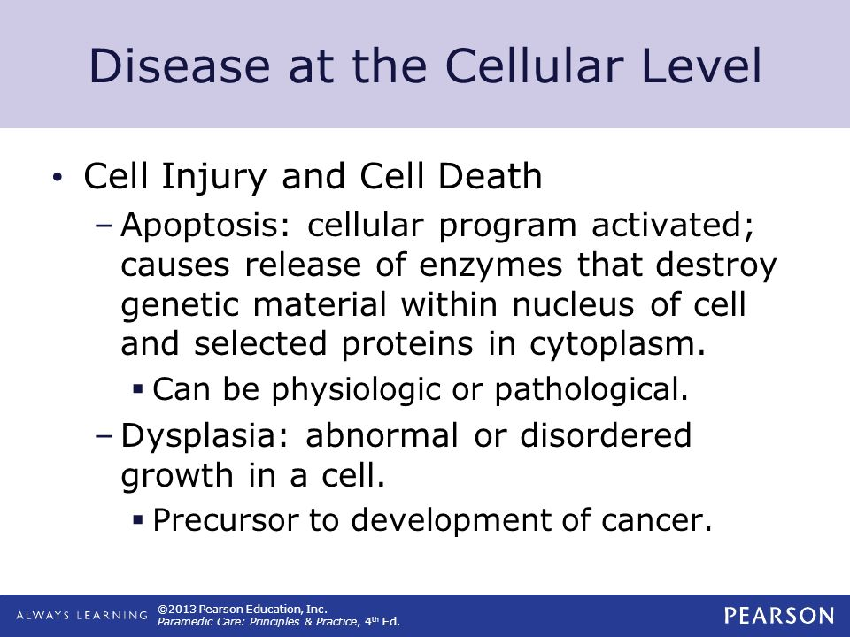 ©2013 Pearson Education, Inc. Paramedic Care: Principles & Practice, 4 th Ed. Disease at the Cellular Level Cell Injury and Cell Death –Apoptosis: cel
