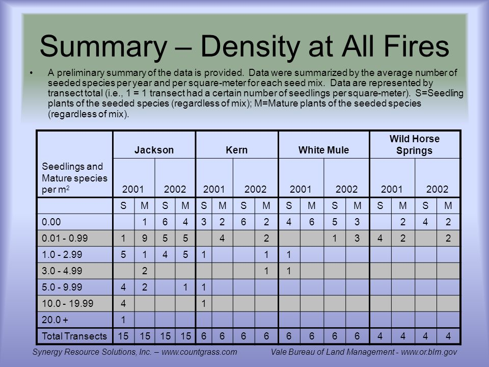 Summary – Density at All Fires A preliminary summary of the data is provided.