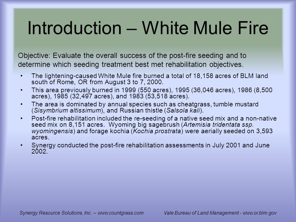 Introduction – White Mule Fire The lightening-caused White Mule fire burned a total of 18,158 acres of BLM land south of Rome, OR from August 3 to 7, 2000.