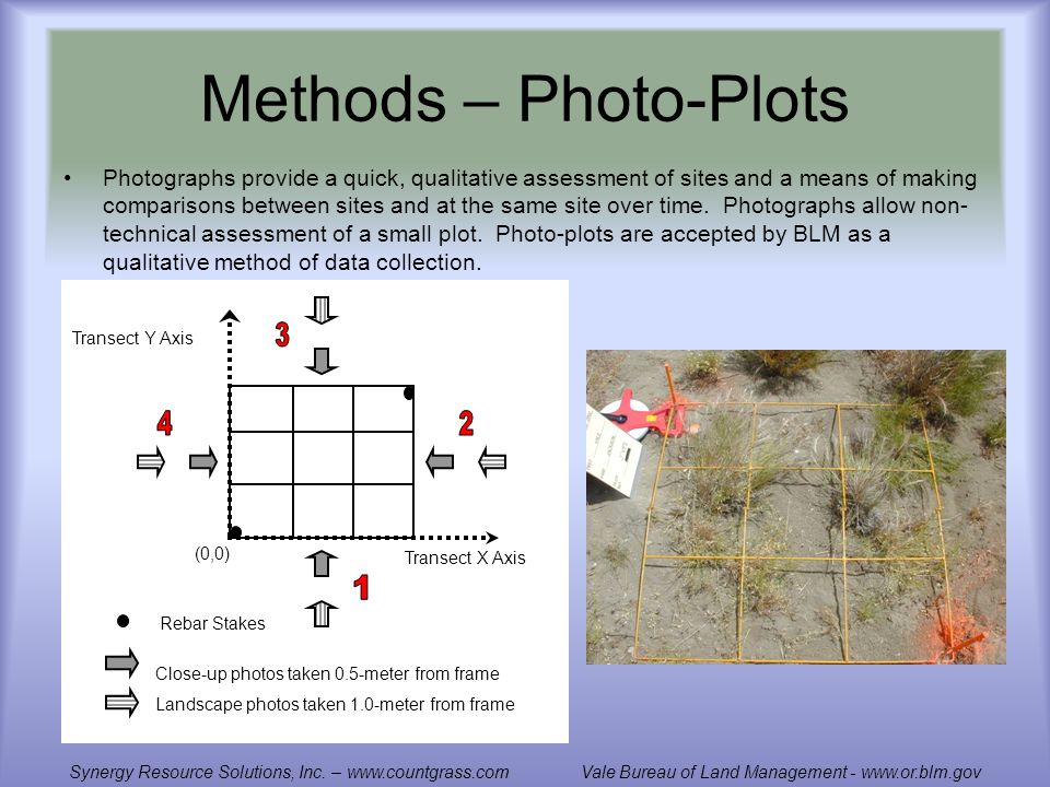 Methods – Photo-Plots Photographs provide a quick, qualitative assessment of sites and a means of making comparisons between sites and at the same site over time.