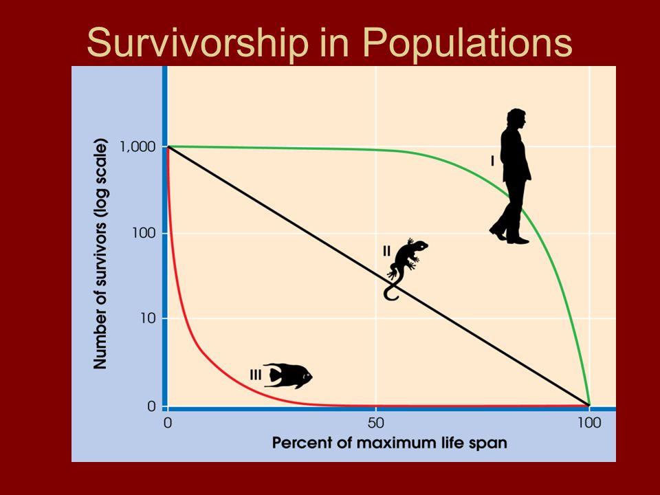 Survivorship in Populations