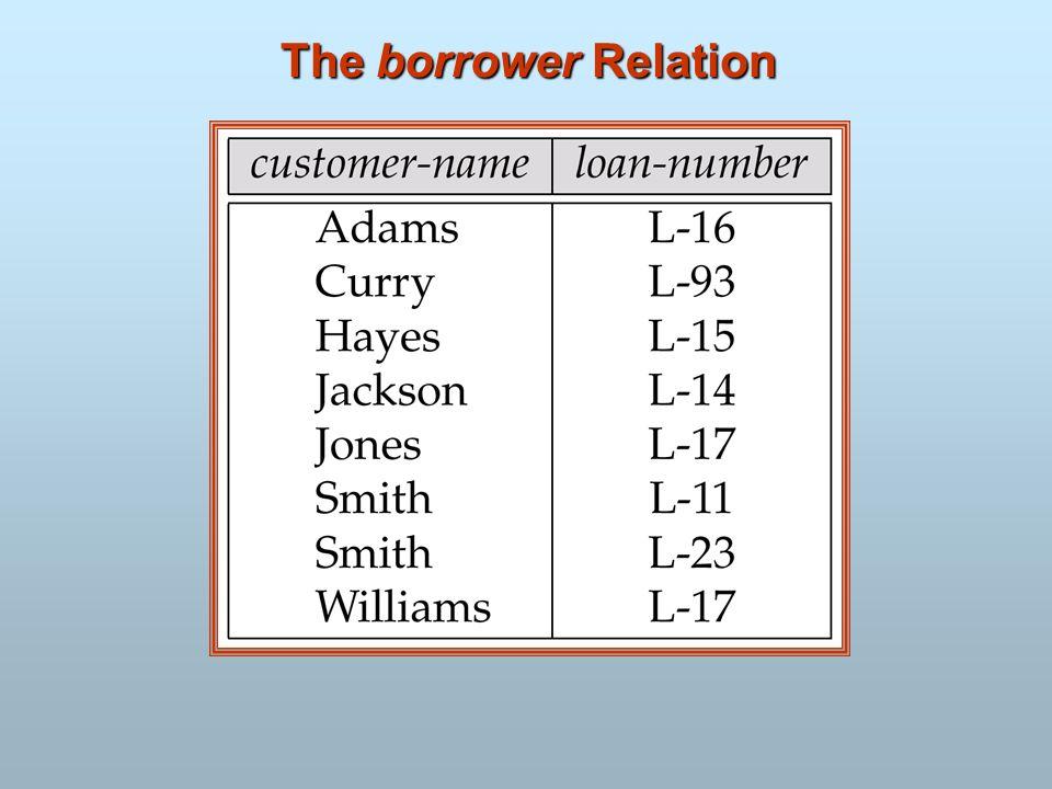 The borrower Relation