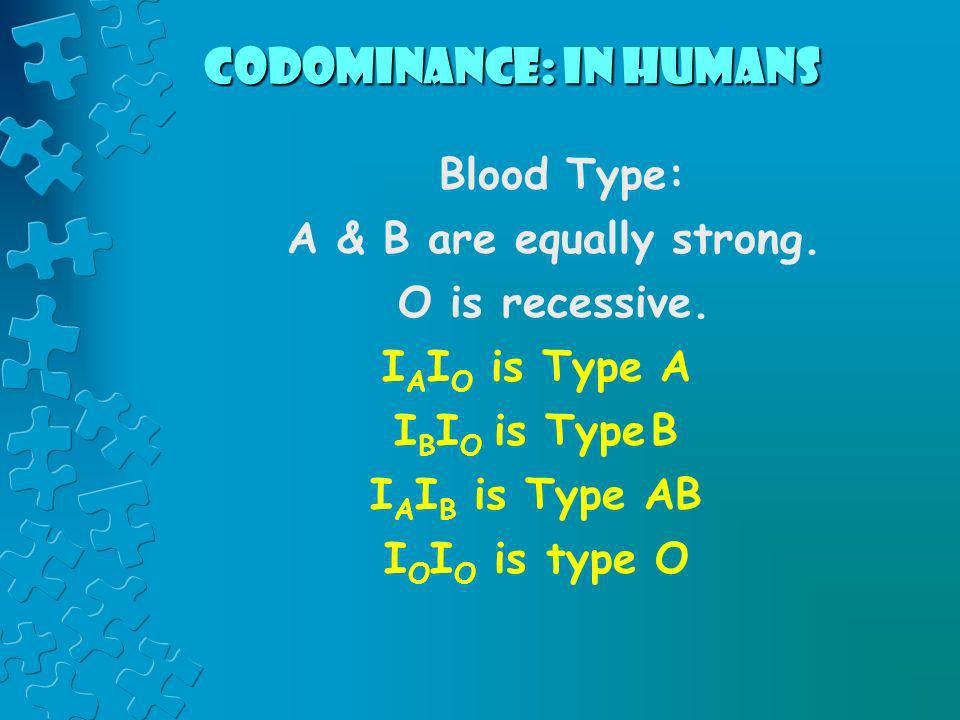 Codominance: in humans Blood Type: A & B are equally strong. O is recessive. I A I O is Type A I B I O is Type B I A I B is Type AB I O I O is type O