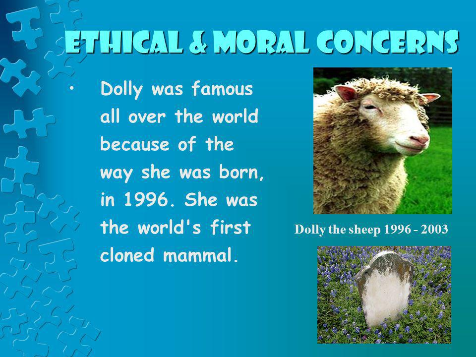 Ethical & Moral Concerns Dolly was famous all over the world because of the way she was born, in 1996. She was the world's first cloned mammal. Dolly