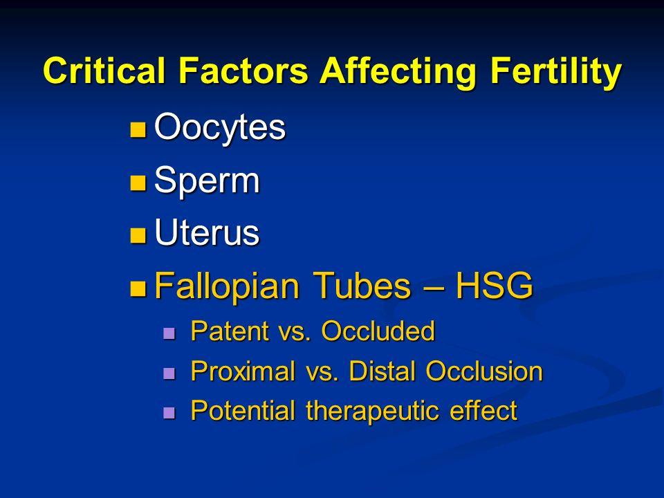 Critical Factors Affecting Fertility Oocytes Oocytes Sperm Sperm Uterus Uterus Fallopian Tubes – HSG Fallopian Tubes – HSG Patent vs. Occluded Patent
