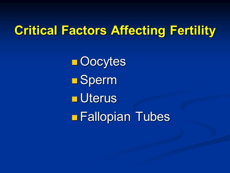 Critical Factors Affecting Fertility Oocytes Oocytes Sperm Sperm Uterus Uterus Fallopian Tubes Fallopian Tubes