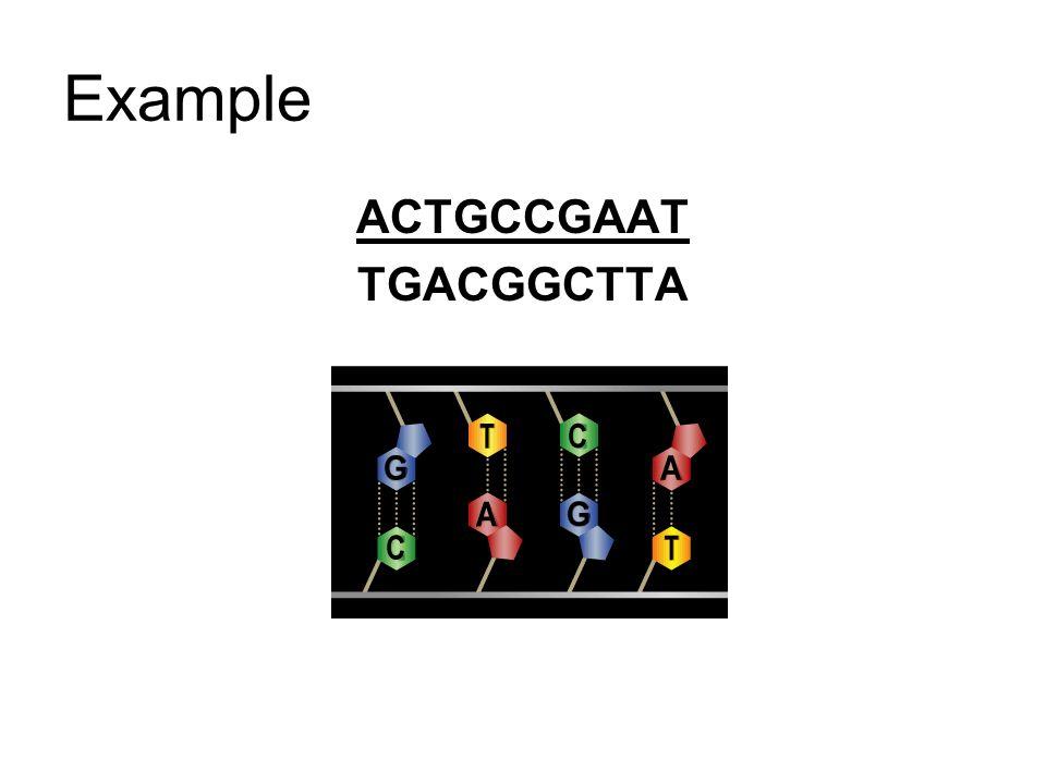Example ACTGCCGAAT TGACGGCTTA