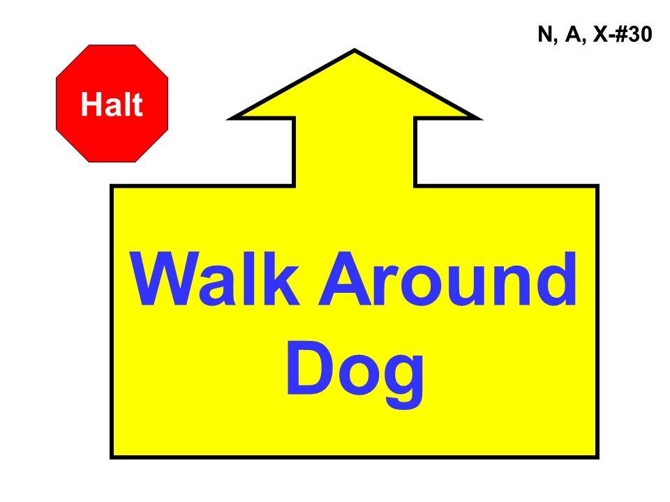 N, A, X-#30 Walk Around Dog Halt