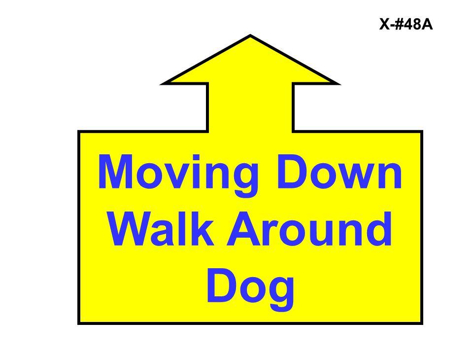 X-#48A Moving Down Walk Around Dog