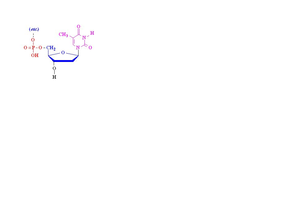 Pyrimidine Dimers from UV http://highered.mcgraw-hill.com/olc/dl/120082/micro18.swf
