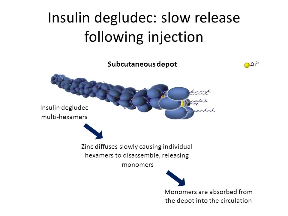 Insulin degludec: slow release following injection Insulin degludec multi-hexamers Zinc diffuses slowly causing individual hexamers to disassemble, re
