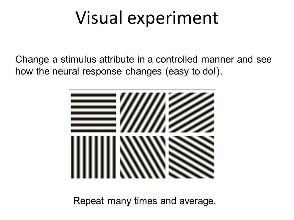 Visual experiment Change a stimulus attribute in a controlled manner and see how the neural response changes (easy to do!).