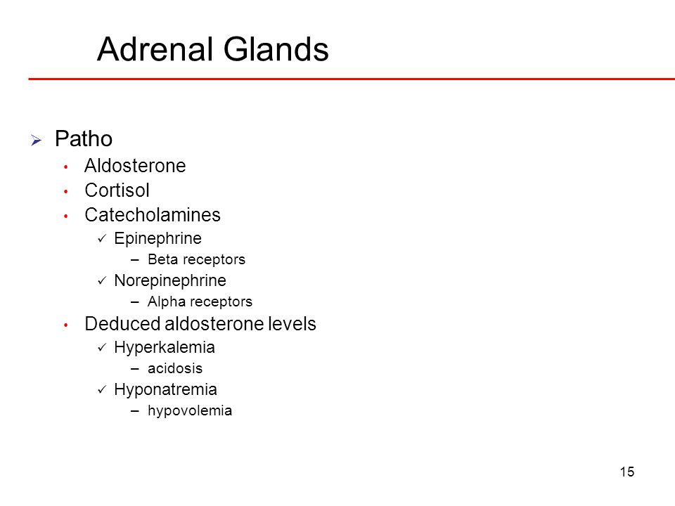 Adrenal Glands 15 Patho Aldosterone Cortisol Catecholamines Epinephrine –Beta receptors Norepinephrine –Alpha receptors Deduced aldosterone levels Hyp