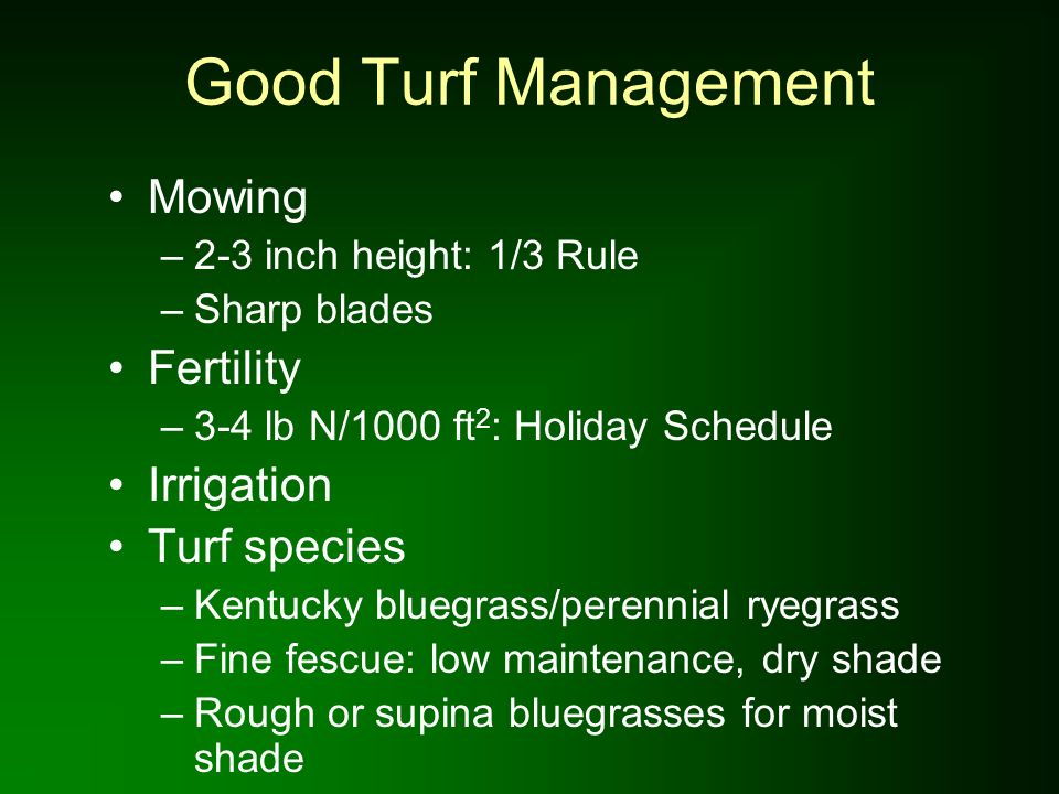 Good Turf Management Mowing –2-3 inch height: 1/3 Rule –Sharp blades Fertility –3-4 lb N/1000 ft 2 : Holiday Schedule Irrigation Turf species –Kentuck