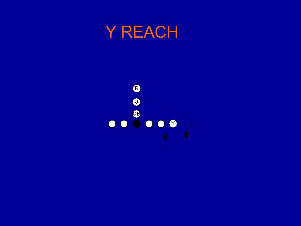 Y REACH
