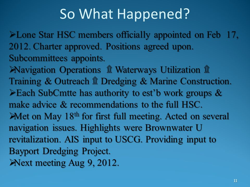 So What Happened? 11 Lone Star HSC members officially appointed on Feb 17, 2012. Charter approved. Positions agreed upon. Subcommittees appoints. Lone