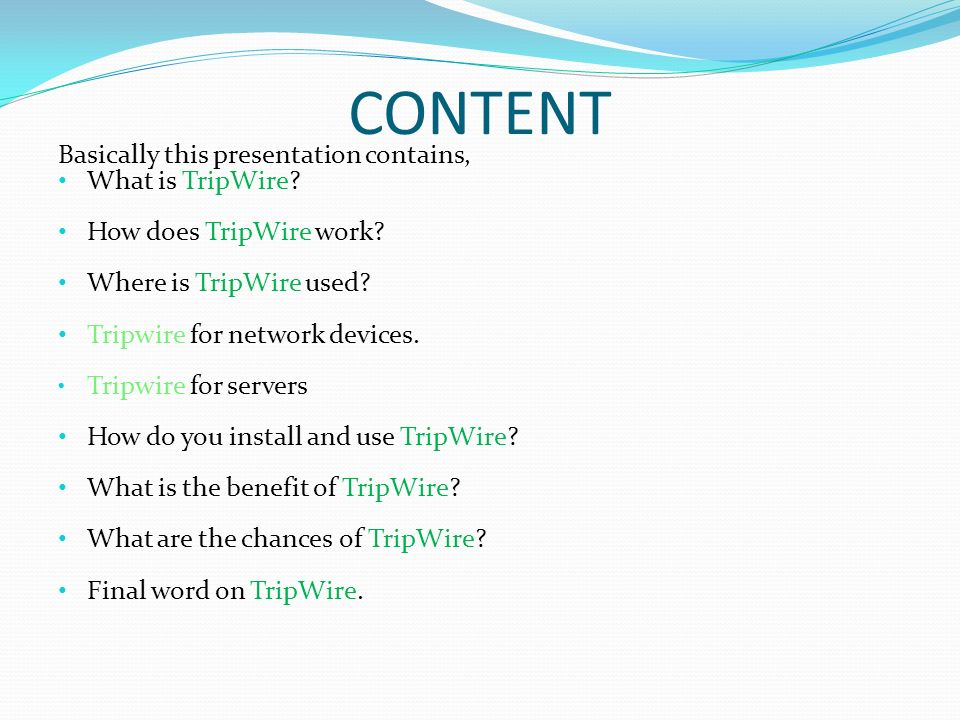 What is TripWire.Reliable intrusion detection system.