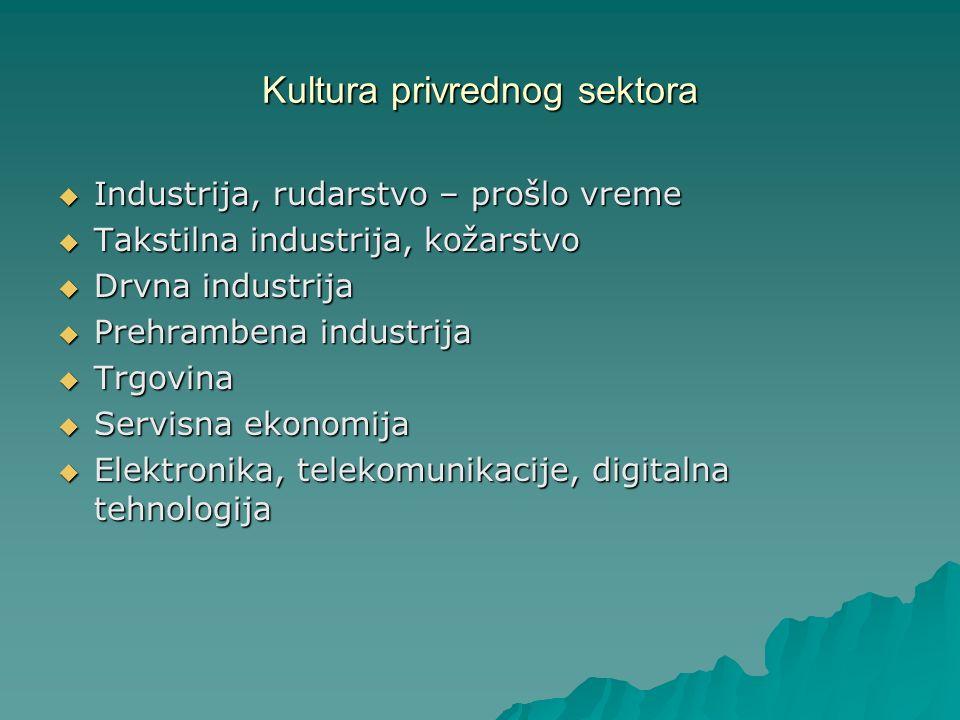 Kultura privrednog sektora Industrija, rudarstvo – prošlo vreme Industrija, rudarstvo – prošlo vreme Takstilna industrija, kožarstvo Takstilna industr