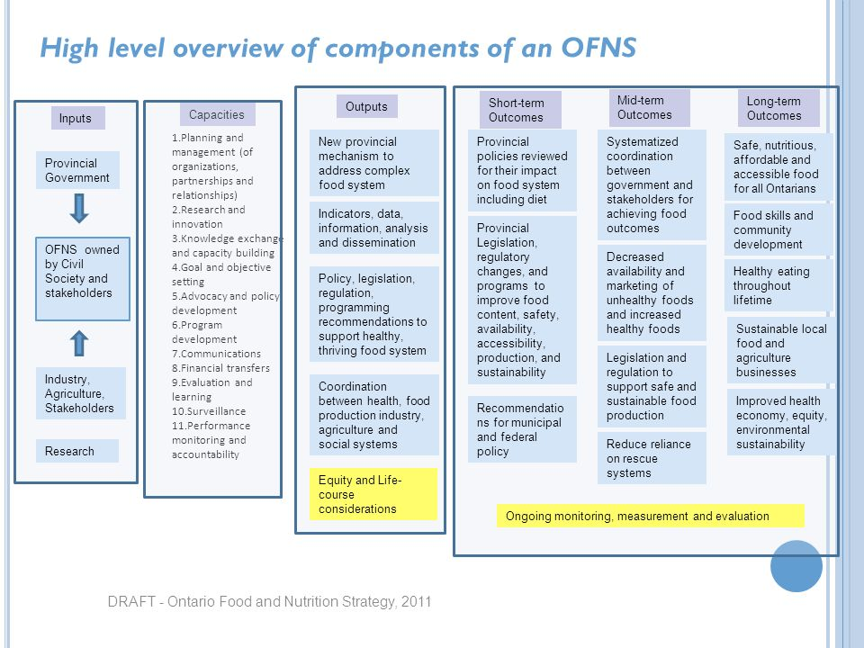 DRAFT - Ontario Food and Nutrition Strategy, 2011 High level overview of components of an OFNS Inputs Capacities Outputs OFNS owned by Civil Society a