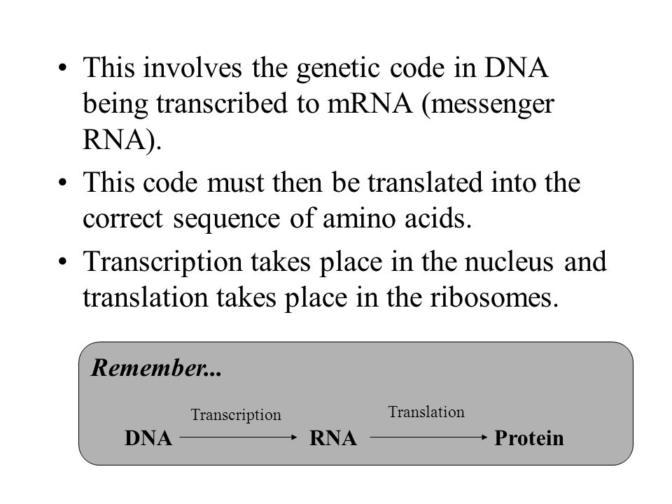 This involves the genetic code in DNA being transcribed to mRNA (messenger RNA). This code must then be translated into the correct sequence of amino