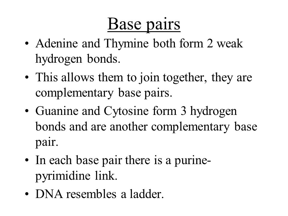 Base pairs Adenine and Thymine both form 2 weak hydrogen bonds. This allows them to join together, they are complementary base pairs. Guanine and Cyto
