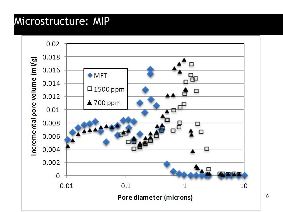 Microstructure: MIP 18
