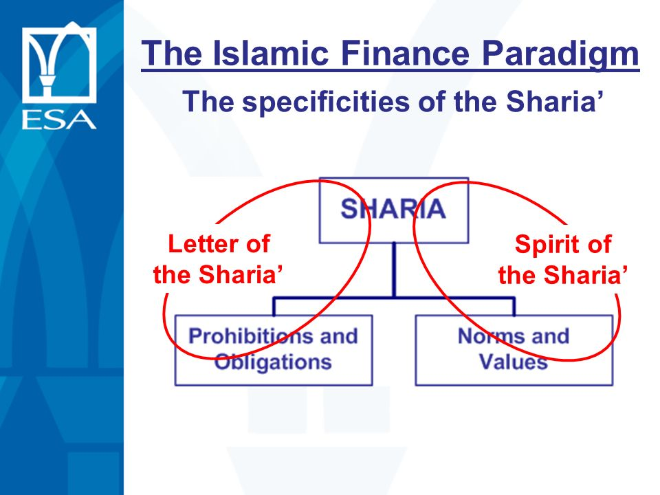 The Islamic Finance Paradigm The specificities of the Sharia Letter of the Sharia Spirit of the Sharia