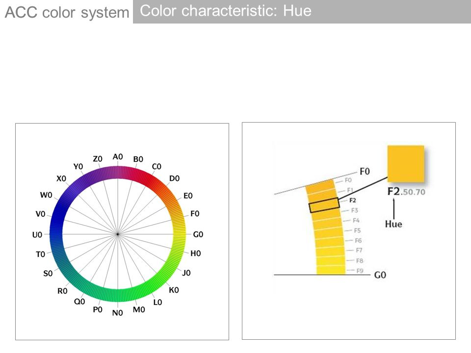 ACC Color characteristic: Hue ACC color system